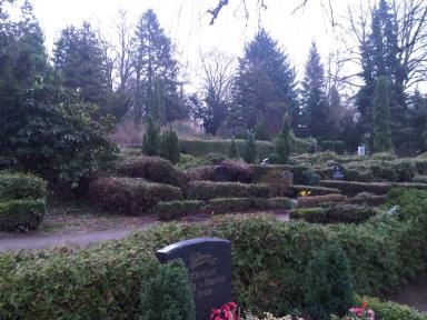 Blick über Gräber, große Bäume dichtstehend im Hintergrund.